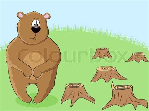 sad brown bear   stumps  forest cutting