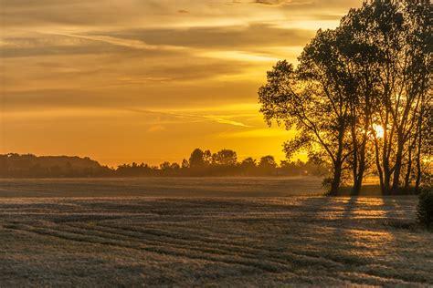 nascer  sol campo natureza foto gratuita  pixabay