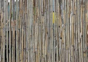 Wie Setze Ich Einen Zaun : wie errichte ich einen schilf sichtschutzzuan garten ~ Articles-book.com Haus und Dekorationen