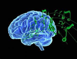 How Does Music Affect The Brain  The Answer Will Make Your