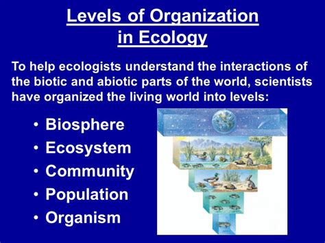 Ecosystem Definition Biology Ecosystem Definition Biology Driverlayer Search Engine