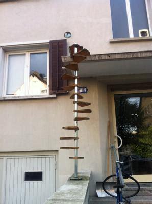 cat ladder poc