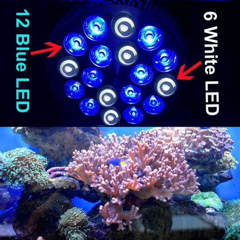 cheap reef tank lighting rayway e27 pa38 12blue 6white led aquarium light bulb