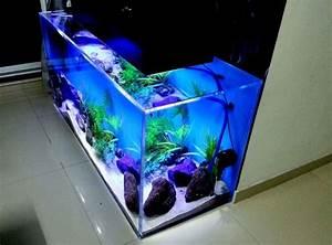 Best 8 Ornamental Fish Aquarium Design Ideas To Make Your