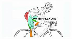 Hip Stretches For Cyclists  Relieve Tight Hip Flexors