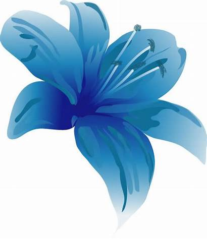 Lily Clipart Clip Lilly Cliparts Flower Water