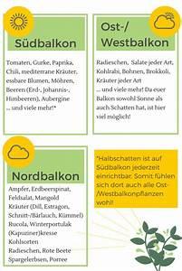 Welche Pflanzen Gegen Wespen : die besten 25 balkon pflanzen ideen auf pinterest ~ Lizthompson.info Haus und Dekorationen