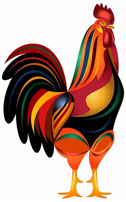 Rooster Transparent Clip Clipart Animated Animals Drawings