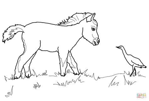 Paarden Kleurplaten Fries by Tekening Paard Luxe Kleurplaat Paard Fries