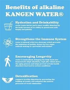 Kangen Water Guide