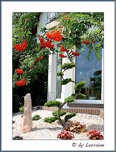 Ich Suche Garten : ich suche die eierlegende wollmilchsau ~ Whattoseeinmadrid.com Haus und Dekorationen