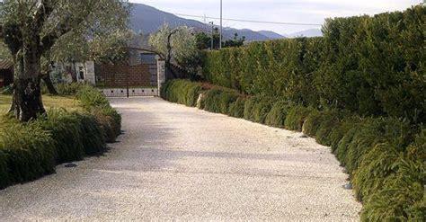 Ghiaia Da Giardino Prezzi by Vialetto Economico In Ghiaia Per Il Giardino
