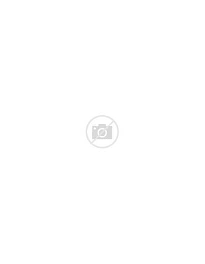 Essay Example Examples Student Sample Paper Research