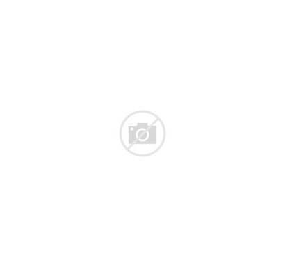 Bent Shaylee Indigenous Nrl Profile Womens Stars