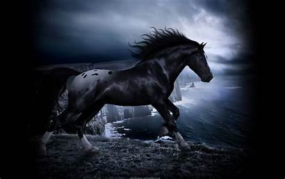 Wolf Fantasy Horse Horses Wallpapers