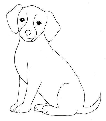 dog drawing step  step samantha bell