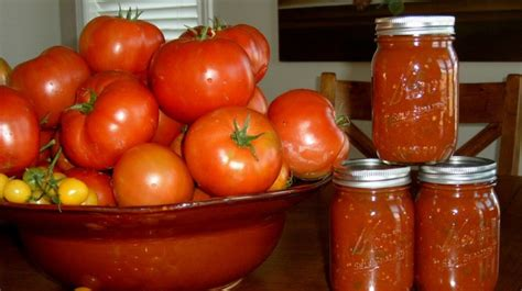 canning tomatoes canning tomatoes a smart idea to keep your fresh harvest longer