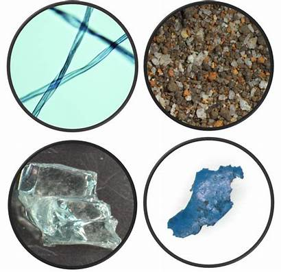 Trace Evidence Analysis Forensic Types Paint Glass