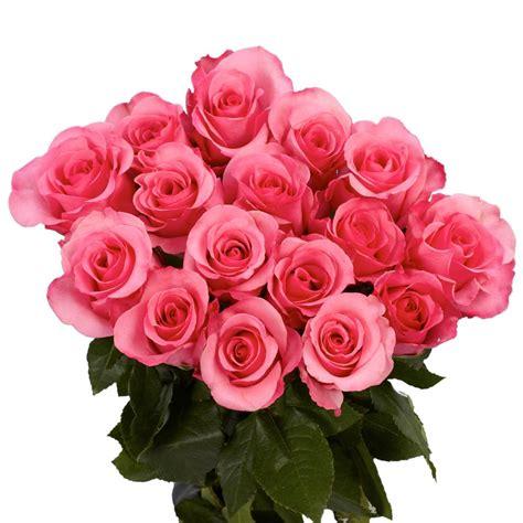 globalrose fresh beautiful pink roses  stems  pink