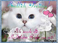 Freitag GB Pics, GB Bilder, Gästebuchbilder, Facebook