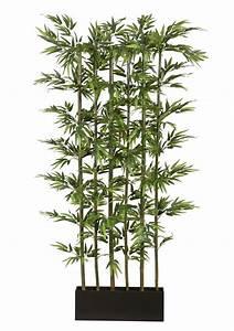 Bambus Als Zimmerpflanze : home affaire kunstpflanze bambus online kaufen otto ~ Eleganceandgraceweddings.com Haus und Dekorationen