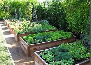 Bac En Bois Pour Potager : 1001 id es bac jardin jardiniere en palette et ~ Dailycaller-alerts.com Idées de Décoration