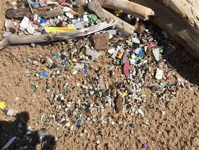 Debris Marine Lakes Noaa Litter Program Tackling