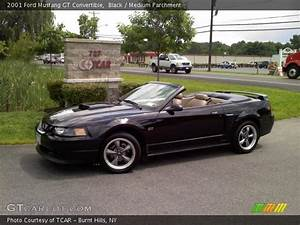 Black - 2001 Ford Mustang Gt Convertible