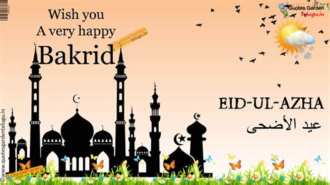 happy bakrid wishes  pictures  guy