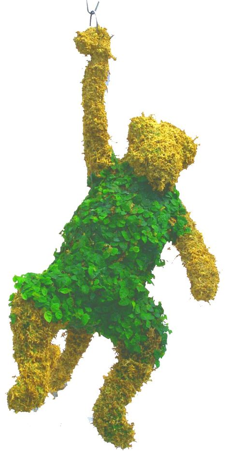 17 Best Images About Topiary On Pinterest  The Universe