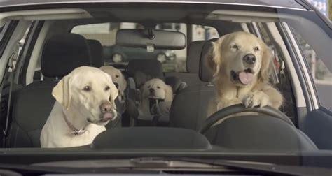Subaru Dog Commercials 2014