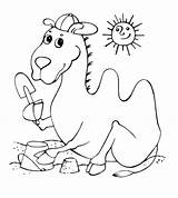 Camel Coloring Pages Coloring2print sketch template