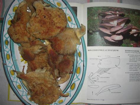 comment cuisiner des pleurotes comment cuisiner les pleurotes 28 images cuisiner les