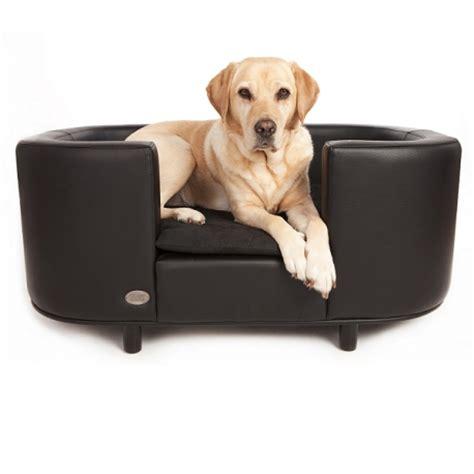 canapé pour chien grande taille canapé pour chien canapés et sofas pour chien oh pacha