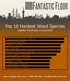 fantastic floor faq what is the most durable hardwood flooring available infographic