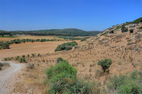 of the valley the valley of elah