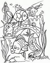 Coloring Fish Pages Tropical Tank Colouring Printable Adults Drawing Realistic Sheets Aquarium Fishing Adult Kid Bang Ocean Activity Clipart Books sketch template