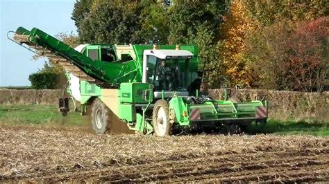 agriculture arrachage des pommes de terre avec arracheuse