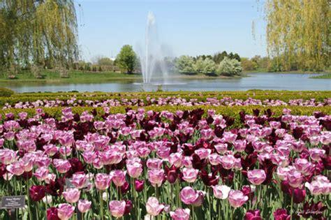 botanic gardens chicago chicago chicago botanic garden sculptures at the