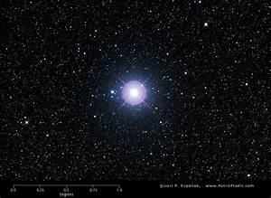 Procyon Star System - Pics about space