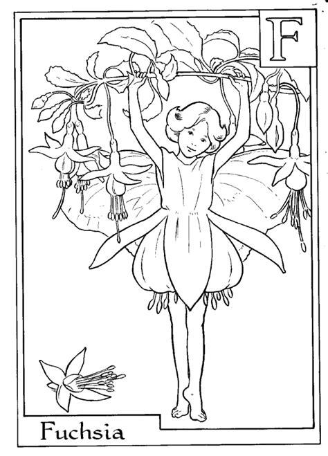 fairy alphabet coloring pages   print