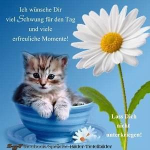 Guten Morgen Bilder Fürs Handy : guten morgen video f r whatsapp bilder19 ~ Frokenaadalensverden.com Haus und Dekorationen