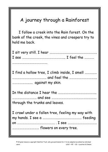 forest meets  sea  hamiltontrust teaching