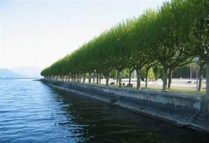 Gifi Aix Les Bains : aix les bains les monuments d 39 aix les bains sur 5 123 ~ Dailycaller-alerts.com Idées de Décoration