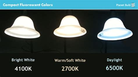 daylight bulb color compact fluorescent cfl colors explained kelvin color
