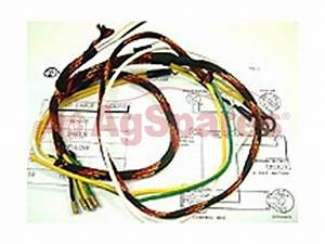 Wiring Harness Tea20  6 Or 12v
