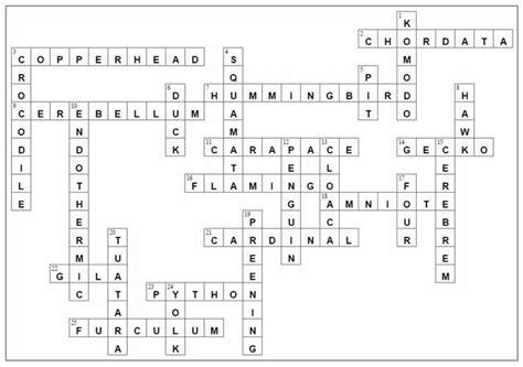Birds And Reptiles Crossword