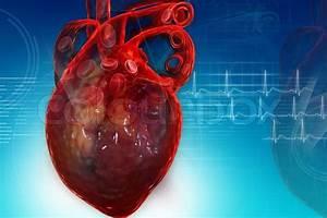 Heart Pumping Blood
