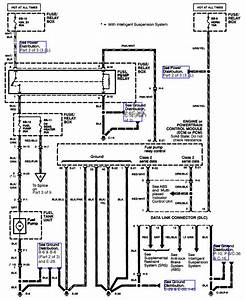 2001 Isuzu Fuse Diagram