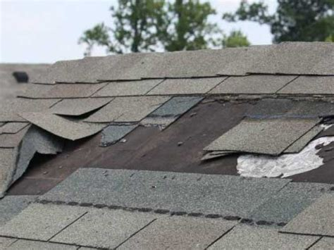 Lehigh Valley, Pa Missing Shingles Porch Roof Construction Pergola Tin Owens Corning Denver Roofing Plant Contractors Buffalo Vintage Tile Average Cost Of A Firestone Insulation Best Cleaning Solution